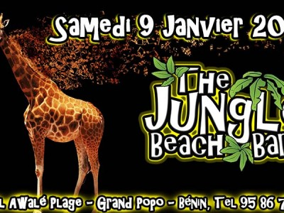 L'hôtel Awalé Plage (Grand Popo - Bénin) - Beach party